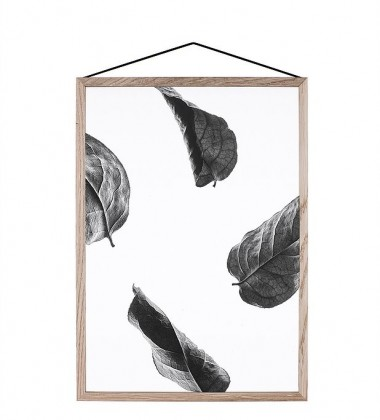 A5 Floating Leaves Transparent Film with Print 02