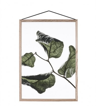 A4 Floating Leaves Transparent Film with Print 03