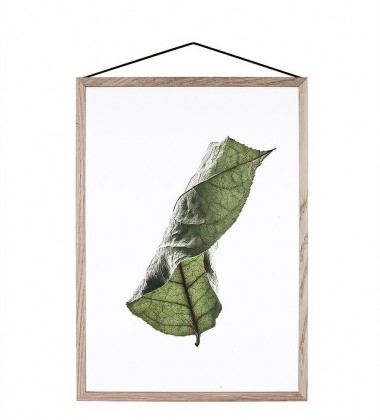 A5 Floating Leaves Transparent Film with Print 04