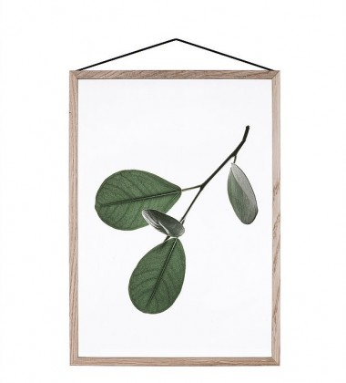 A5 Floating Leaves Transparent Film with Print 05