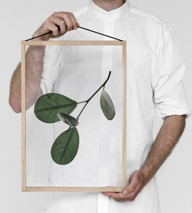 A3 Floating Leaves Transparent Film with Print 05
