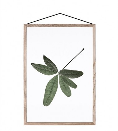 A5 Floating Leaves Transparent Film with Print 06