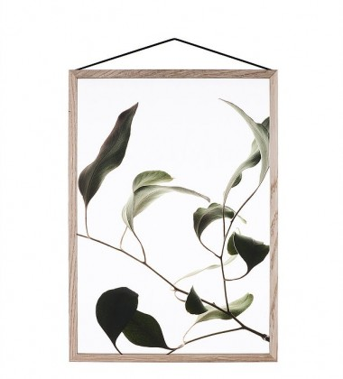 A4 Floating Leaves Transparent Film with Print 09