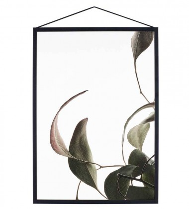 A4 Floating Leaves Transparent Film with Print 08
