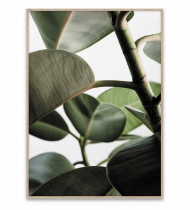 Green Home 03 Poster 30x40 Green