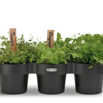 Potrójny pojemnik na zioła i przybory POT1 Czarny