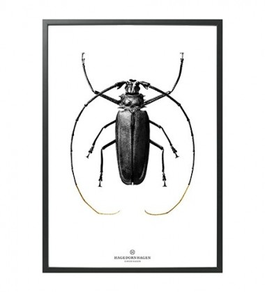 BW2 Poster 70x100 BLACK BUG