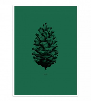 Pine Cone Poster 50x70 Dark Forest Green