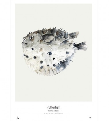 Ocean - Pufferfish Poster 30x40