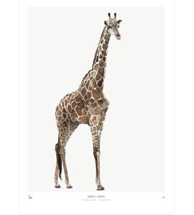 Poster Into The Wild 30x40 Giraffe