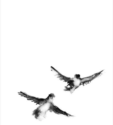 Poster akwarela Lets Fly 30x40 Ptaki