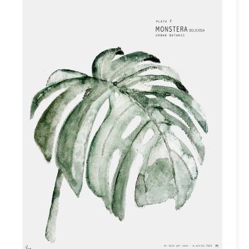 Poster Urban Botanic 30x40 Plate 3 Monstera