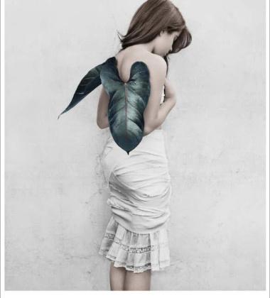 Poster 50x70 THIRTEEN 11 Wings By Vee Speers