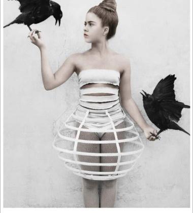 Poster 50x70 THIRTEEN 5 Crows By Vee Speers