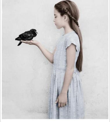 Poster 50x70 BIRTHDAY PARTY 22 Bird By Vee Speers