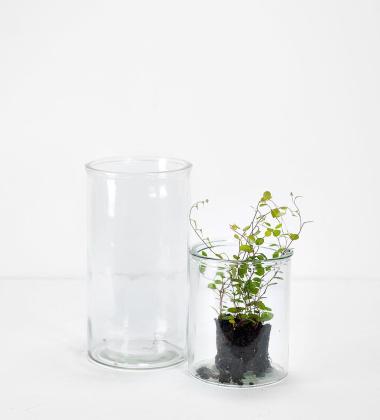 Szklane naczynie wazon H24 CYLINDER VASE by Meraki