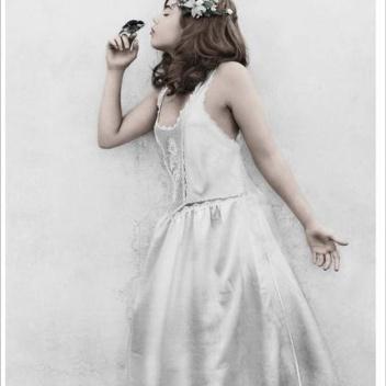 Poster 50x70 THIRTEEN 3 Bird By Vee Speers