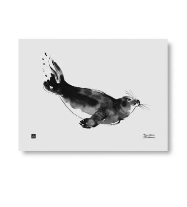 Poster foka Teemu Jarvi 30x40 RINGED SEAL