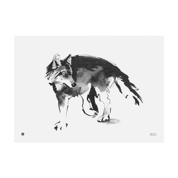 Poster wilk Teemu Jarvi 50x70 WOLF