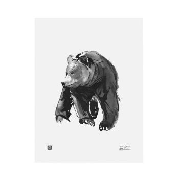 Poster niedźwiedź Teemu Jarvi 30x40 GENTLE BEAR