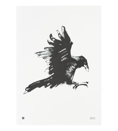Poster kruk Teemu Jarvi 50x70 RAVEN