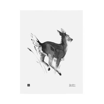 Poster jelonek Teemu Jarvi 30x40 WHITE-TAILED DEER
