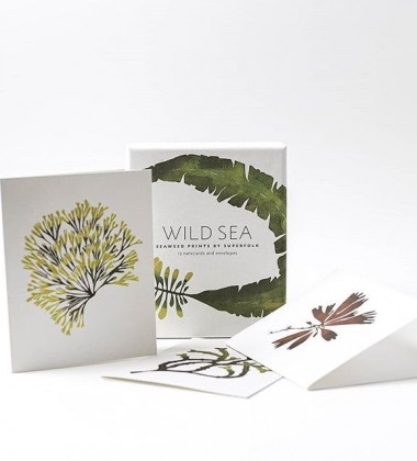 Zestaw kart z kopertami WILD SEA NOTECARDS 12 SET
