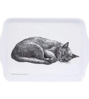 Taca z melaminy 21x14 Casual Cats Sleeping Kotki