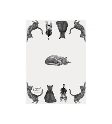 Ścierka kuchenna bawełniana 50x70 Casual Cats Family