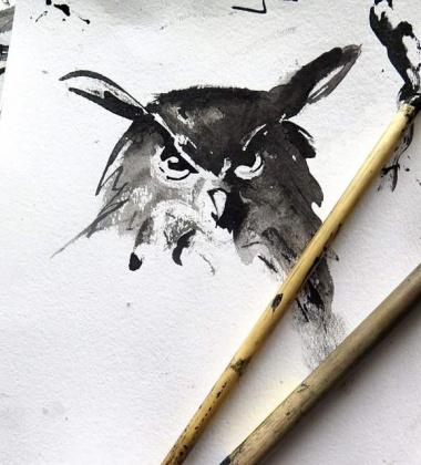 Poster sowa Teemu Jarvi 30x40 OWL