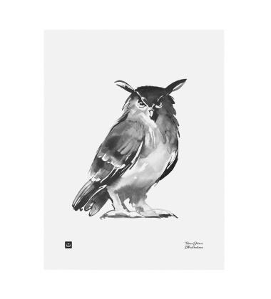 Poster sowa Teemu Jarvi 50x70 OWL