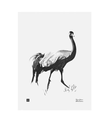 Poster żuraw Teemu Jarvi 30x40 CRANE