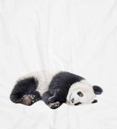 Pościel bawełniana z pandą 140x200 LAZY PANDA