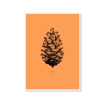 Pine Cone Poster 50x70 Orange