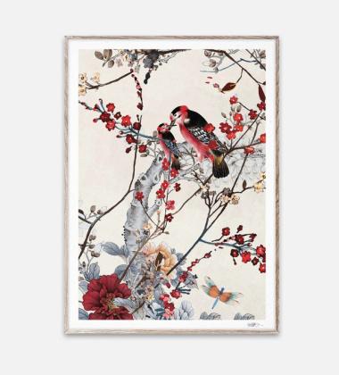 Poster 50x70 BIRDS by Naja Munthe