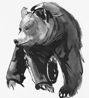 Poster niedźwiedź Teemu Jarvi 50x70 GENTLE BEAR