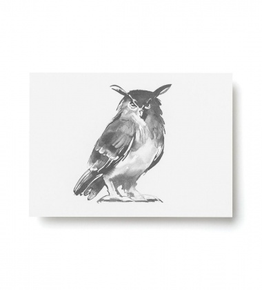 Kartka A6 sowa Teemu Jarvi OWL