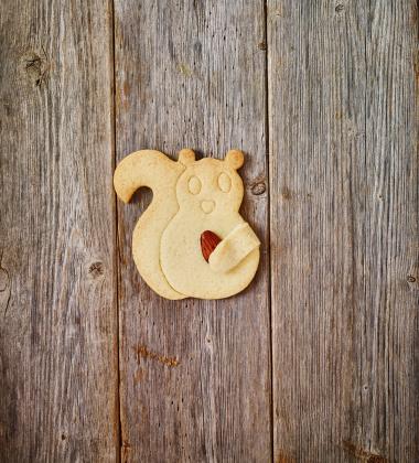 Foremka do wykrawania ciastek WIEWIÓRKA PRZYTULANKA by Birkmann