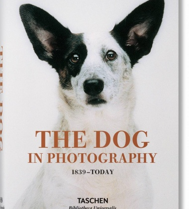 Książka THE DOG IN PHOTOGRAPHY 1839–Today