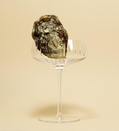 Kieliszek do szampana cięte szkło Crystal Champagne Coupe Clear