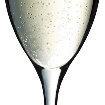 Zestaw 6 kieliszków do szampana EASY PLUS 250 ml by WMF
