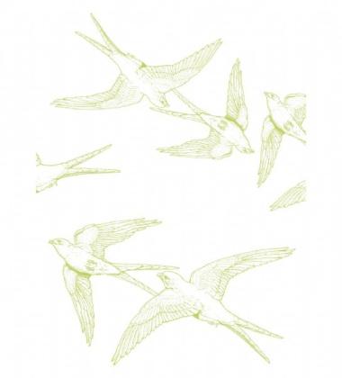 Ścierka kuchenna Birds 50x70 Limonka