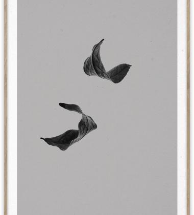 Sabi Leaf 02 Poster 50x70 Grey